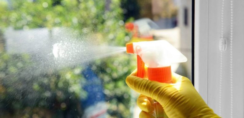 Eco-friendly Window Cleaning – Top Reasons to Choose It!