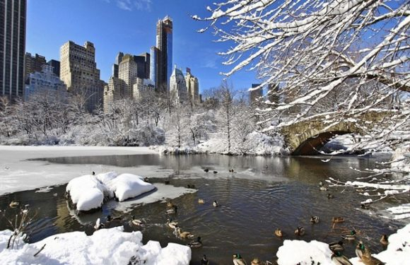 Your Winter Travel Guide to New York City