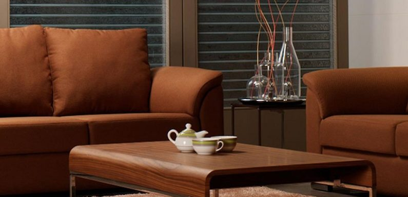 Things To Consider While Planning to Purchase The Ergonomic Sofa