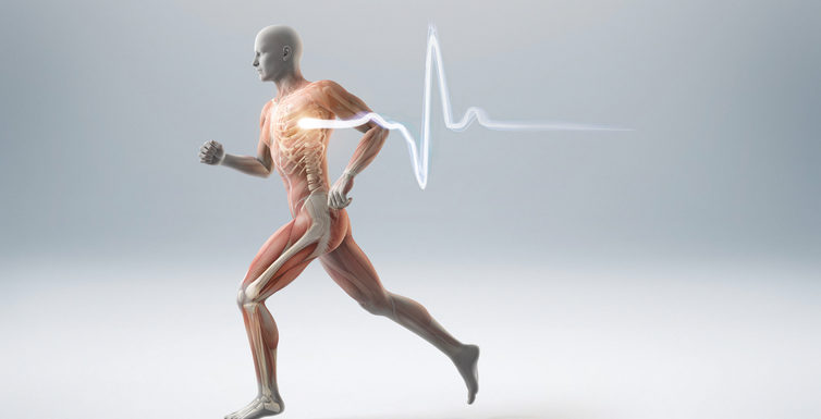 Healthy Bones: Exercising Should Be Your Priority