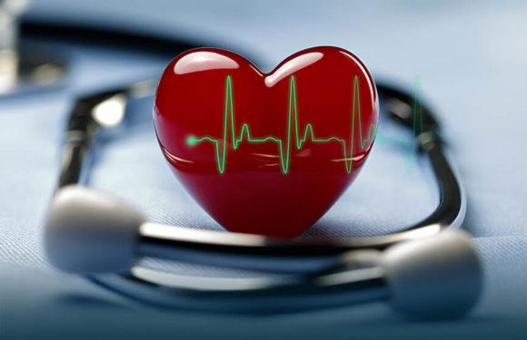 Why You Should See A Cardiologist From Time to Time