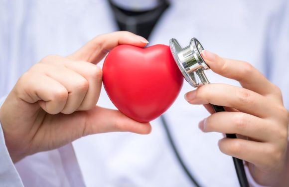 Grown-up Cardiology Consultation