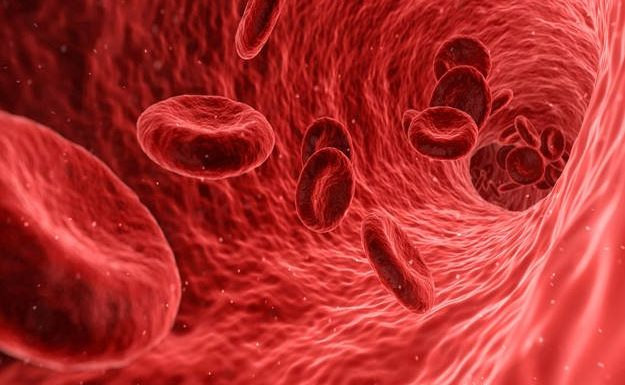 Best Treatment for Myelodysplastic Syndrome in Flemington, New Jersey