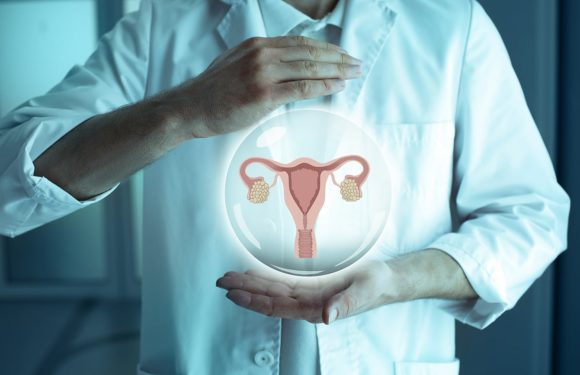 Determine the Cause of Your Infertility through HSG in Florida