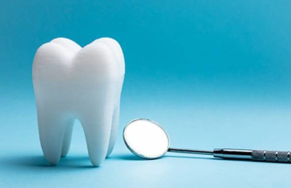What You Should Know Concerning Early Dental Care