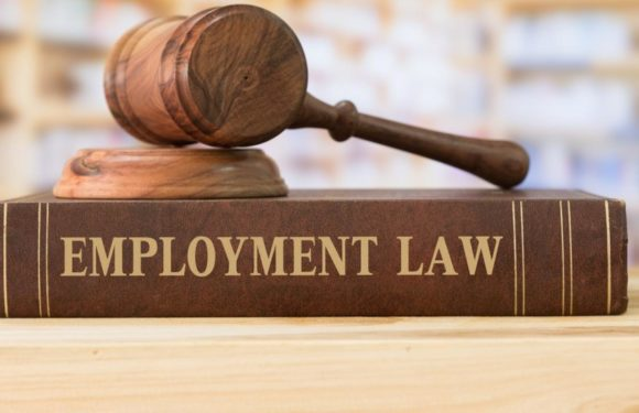 Everything You Should Know About the State Employment Protection Law